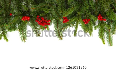 Fir tree branch isolated on white background #1261031560