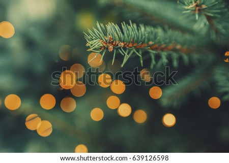 Fir-tree spruce branch with orange bokeh unfocused sparkles decor lights. Christmas new year year background template. Holiday wallpaper concept. Shallow focus. Vintage effect. Copy space. #639126598