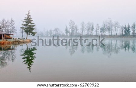 Fir trees reflecting in still lake water on cold misty morning