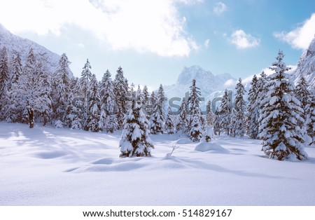Fir trees under the snow in mountain forest in winter. Christmas landscape #514829167