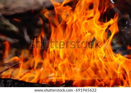 Fire #691965622