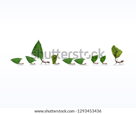 Fire ants marching in line carrying leaves, teamwork concept, 3d render,  Photo stock ©