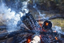 Fire at night in nature. Burning logs in camp fire. Outdoor camping concept. Close up of flames fire with red and orange flames in the night. Smoldering embers in a fire, burning wood.