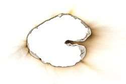 Fire burned hole white paper background texture isolated on white background. Paper burn mark stain