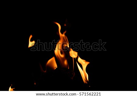 Fire flame on the black background.Fire in darkness. #571562221