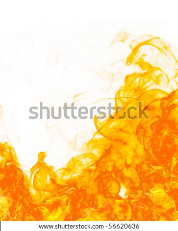 Fire flameon white background