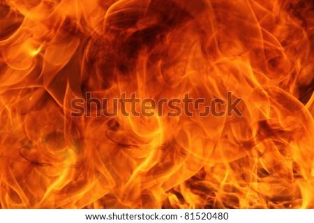 Fire flames #81520480