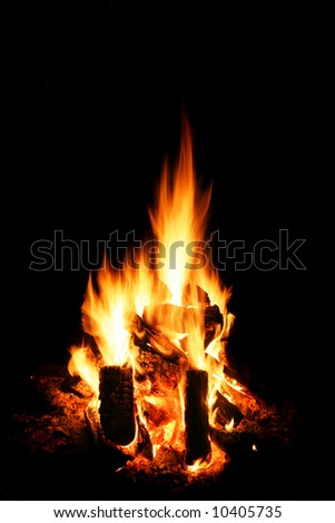 Fire flames at the night