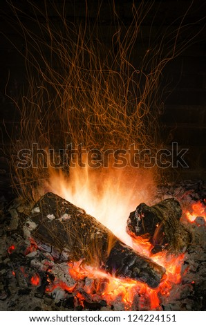 Fire Flames in a fireplace
