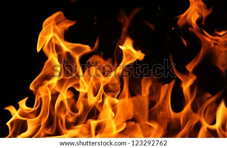 Fire flames isolated on a black background