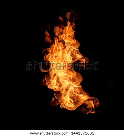 Fire flames isolated on black background #1441371881