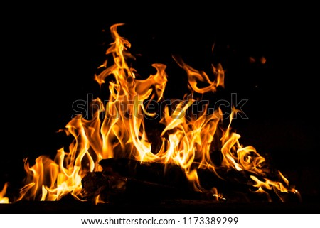 Fire flames isolated on black background. High resolution wood fire flames collection smoke texture background concept image. #1173389299