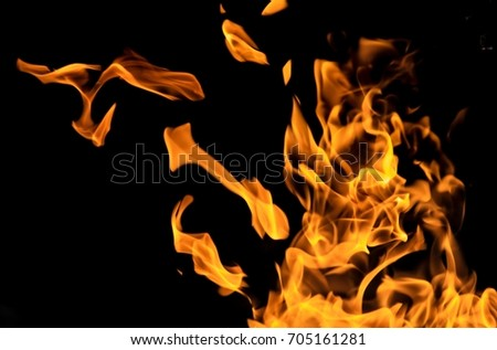Fire flames on a black background #705161281
