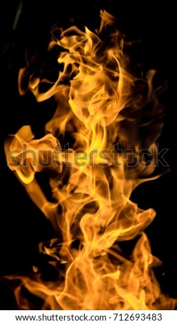 Fire flames on a black background #712693483