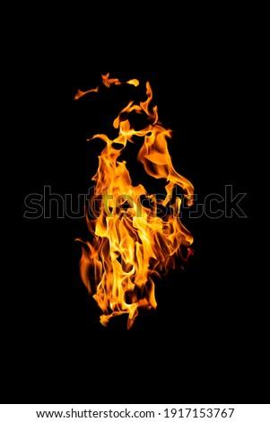 Fire flames on black background Foto d'archivio ©