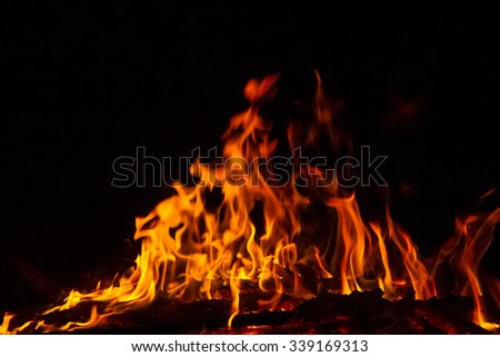 Fire flames on black background #339169313