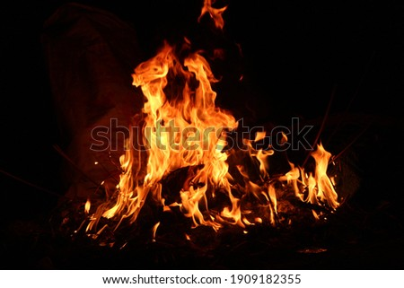 Fire flames on black background. abstract fire flame background.