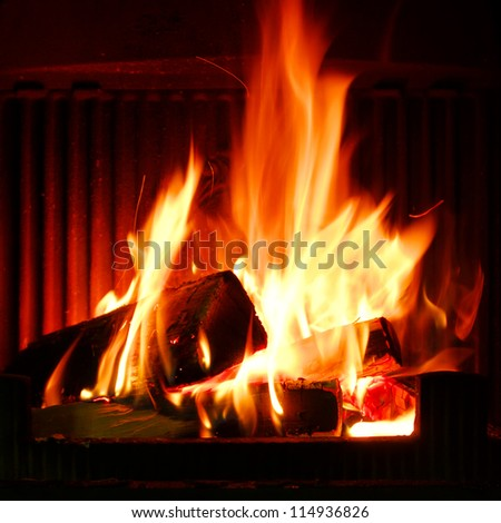 Fire in a fireplace. Fire flames on a black background