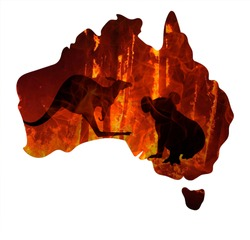 Fire in Australia. Animals killed in Fiers. Catastrophe and apocalypse. Pray for Australia