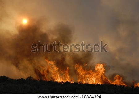 Fire in forests - sun hidden - destruction