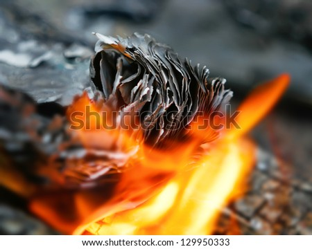 fire in the fire burns out of paper, burn the pages of a book on the coals with flying sparks