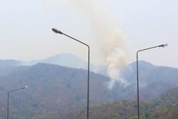 Fire in the wild jungle beside the interstate highway. Forest fire season, protect environment and development concept.