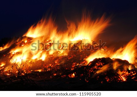 fire nature