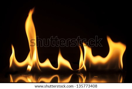 Fire on a black background. Studio shot flames