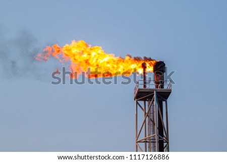 Fire on flare blow out in Offshore oil and Gas central processing platform and remote platform produced oil, natural gas and liquid condensate for set to onshore refinery from offshore in ocean sea. #1117126886