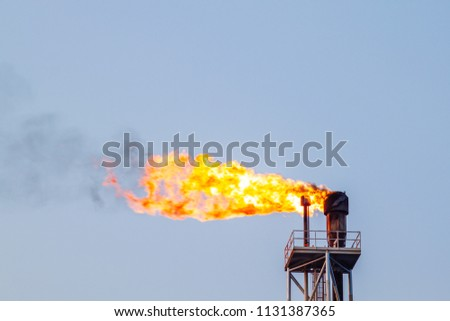 Fire on flare blow out in Offshore oil and Gas central processing platform and remote platform produced oil, natural gas and liquid condensate for set to onshore refinery from offshore in ocean sea. #1131387365