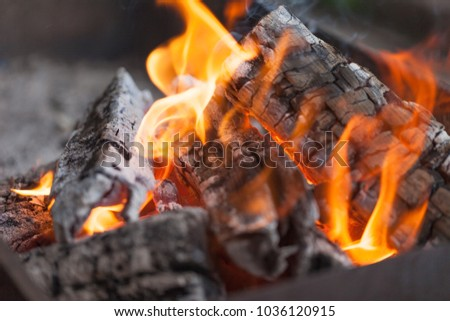 Fire with charcoals. Burning wood. Macro. Live flames with smoke. Wood with flame for barbecue and cooking bbq. Bright color. Orange #1036120915