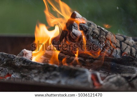 Fire with charcoals. Burning wood. Macro. Live flames with smoke. Wood with flame for barbecue and cooking bbq. Bright color. Orange #1036121470