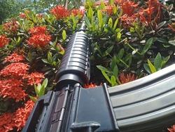 Firearms located in the flower garden