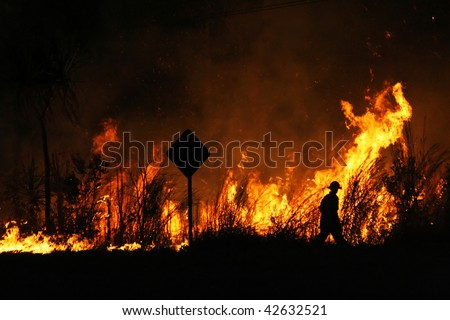 Firefighter walking around a controlled bushfire next to the road.
