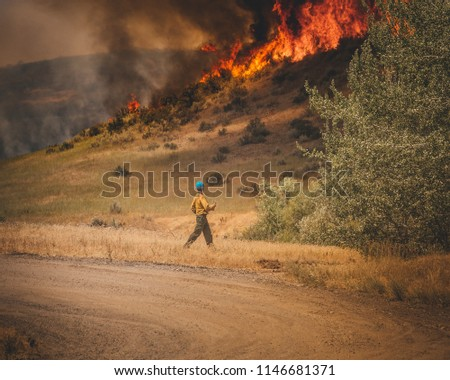 Firefighter working on a fire line.