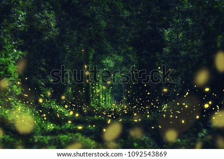 Fireflies in the wild forest. famous romantic place called Tunnel of Love, Klevan, Ukraine.  natural summer (spring) background (collage) #1092543869