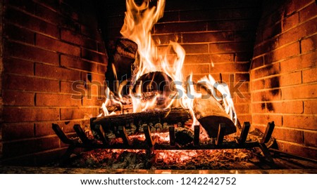 Fireplace fire wood #1242242752