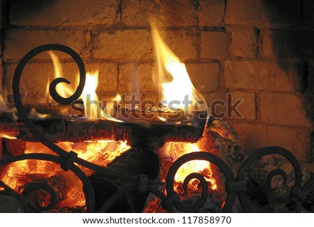 Fireplace with burning logs and designed barrier in the foreground