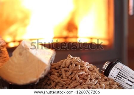 fireplace with pellets and thermostat #1260767206