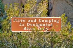 Fires and Camping In Designated Sites Only sign at Joshua Tree National Park. Close up of information signage against green leaves and huge rocks.