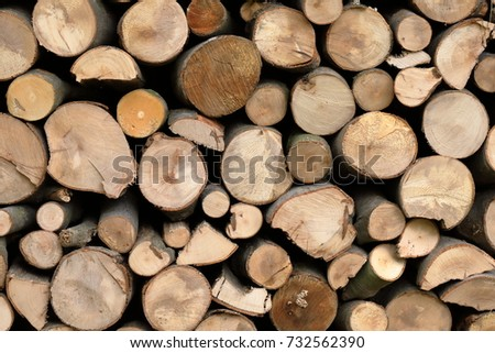Firewood for the winter, stacks of firewood, pile of firewood. #732562390