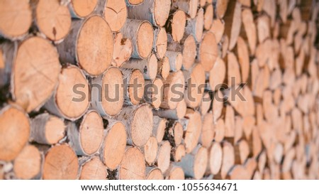 Firewood for the winter, stacks of firewood, pile of firewood. Firewood stacked and prepared for winter. #1055634671