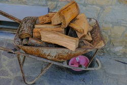 firewood in the metallic barrow close-up on the backyard. Wood chopping process. Countryside life. Logging industry
