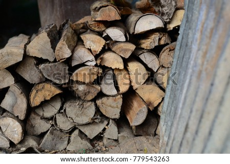 Firewood is used in the winter and is used for cooking , fire wood #779543263