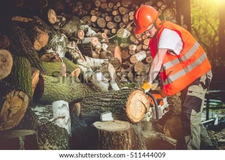Firewood Logs Preparing. Cutting Wood Logs For Hard Winter Season. Stock photo ©