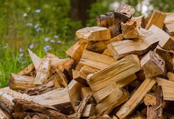 Firewood on green grass background. Select focus.