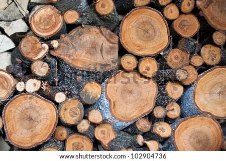 Round Firewood Pile Firewood Pile Closeup Round