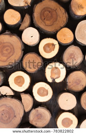 Firewood prepared for fireplace and boiler,Firewood in fireplace , Close Up of firewood , wooden background, , Firewood stacked and prepared for winter Pile of wood logs. #783822802
