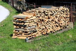 Firewood prepared for winter heating in large pile in front of rusted metal fence surrounded with uncut grass and small domestic cat next to paved road on warm sunny day