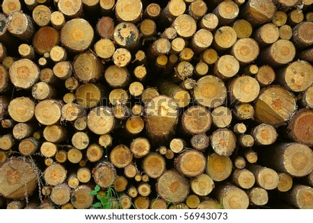 Firewood stack background